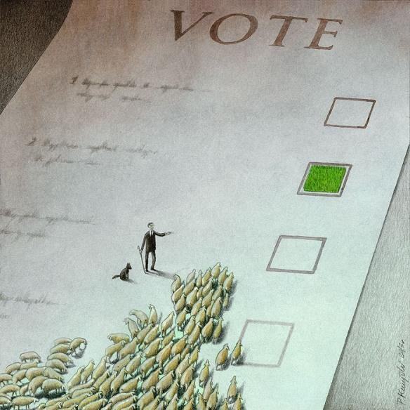 Voto dirigido